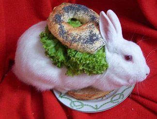 Little Wee Bagel sandwich